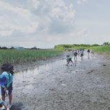 2019/6/18~19 木更津の干潟にて環境教育プログラムの講師として参加してきました☆